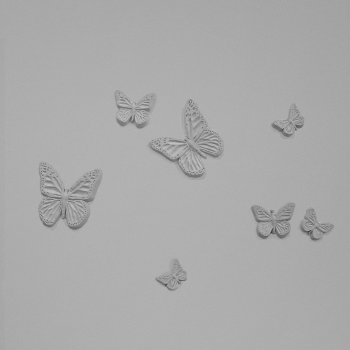 Butterflies Series A