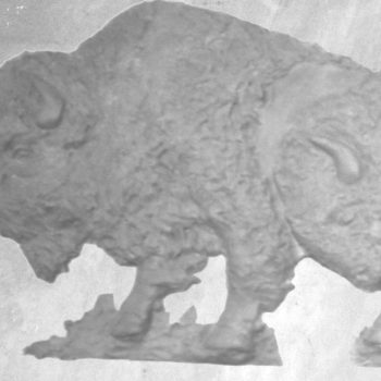 Buffalo Series B