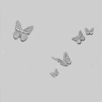 Butterflies Series B
