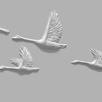 Geese Series B