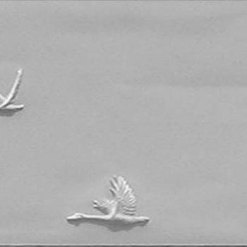 Geese Series D