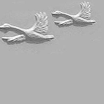 Geese Series F